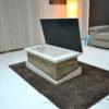 Stone storage coffee table